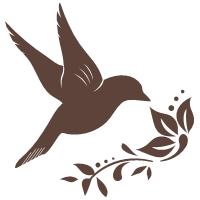 Creative Hummingbird