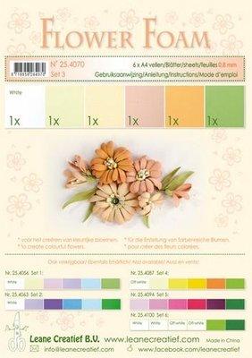 Leane Creatief Flower Foam Assortiment  3 - Zalm 25.4070 SALE